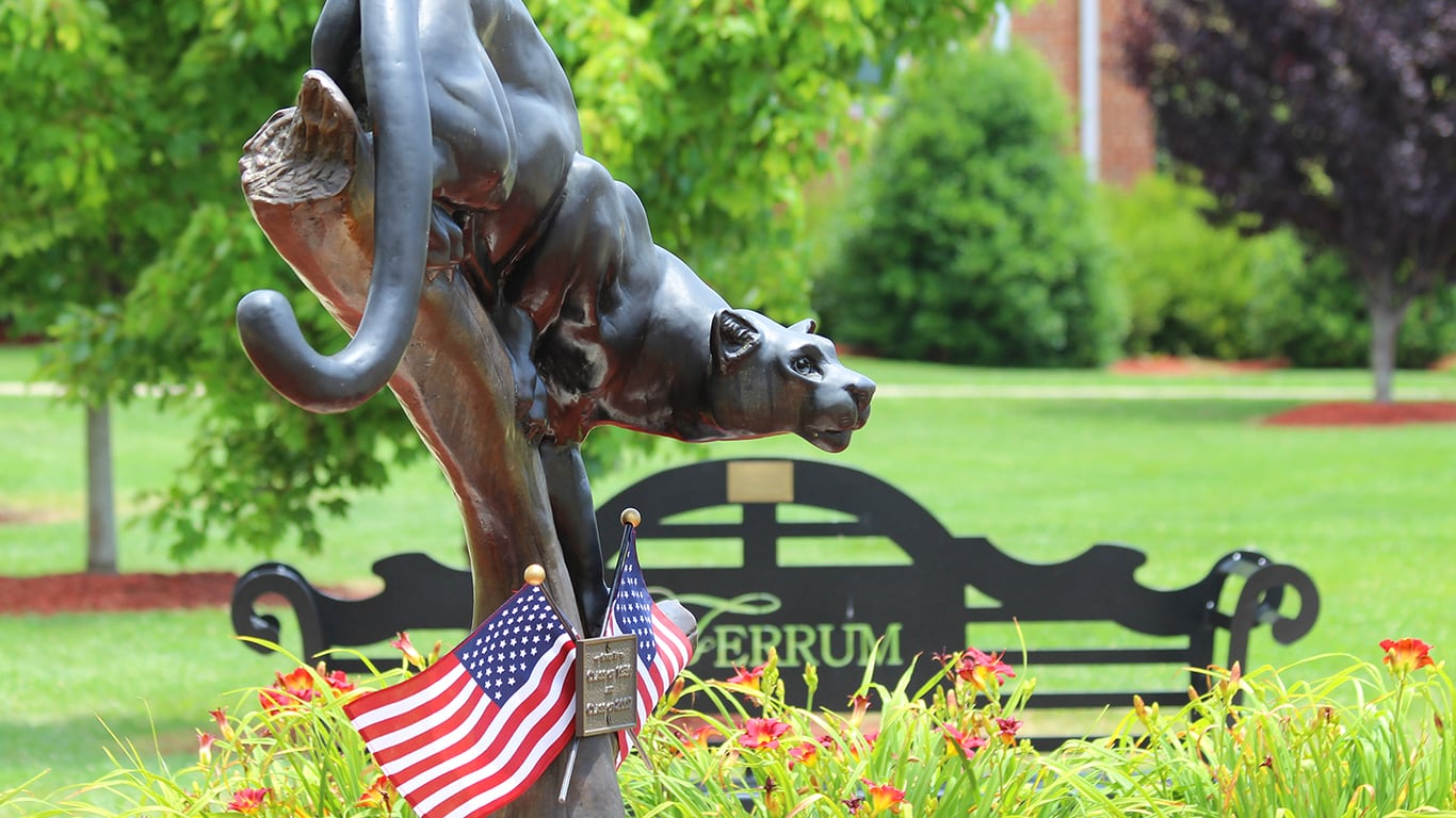 Ferrum College Panther and Flags