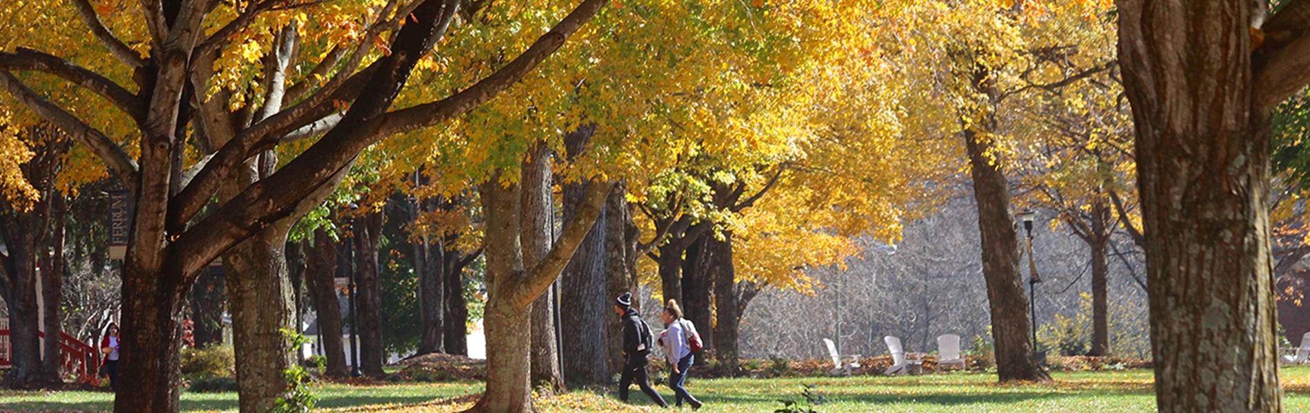 Fall at Ferrum College