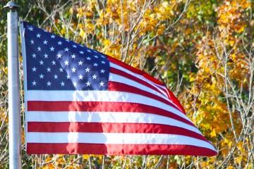 "Ret. Chief Petty Officer Debra ""Robin"" Haas to Speak during Veterans Day Program Nov. 12"
