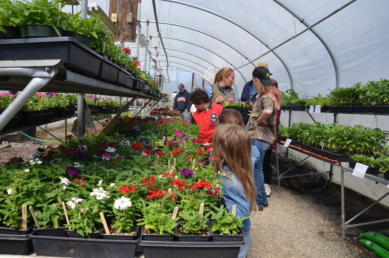 Ferrum College plant sale occurs April 13 from 9 a.m. to 5 p.m.