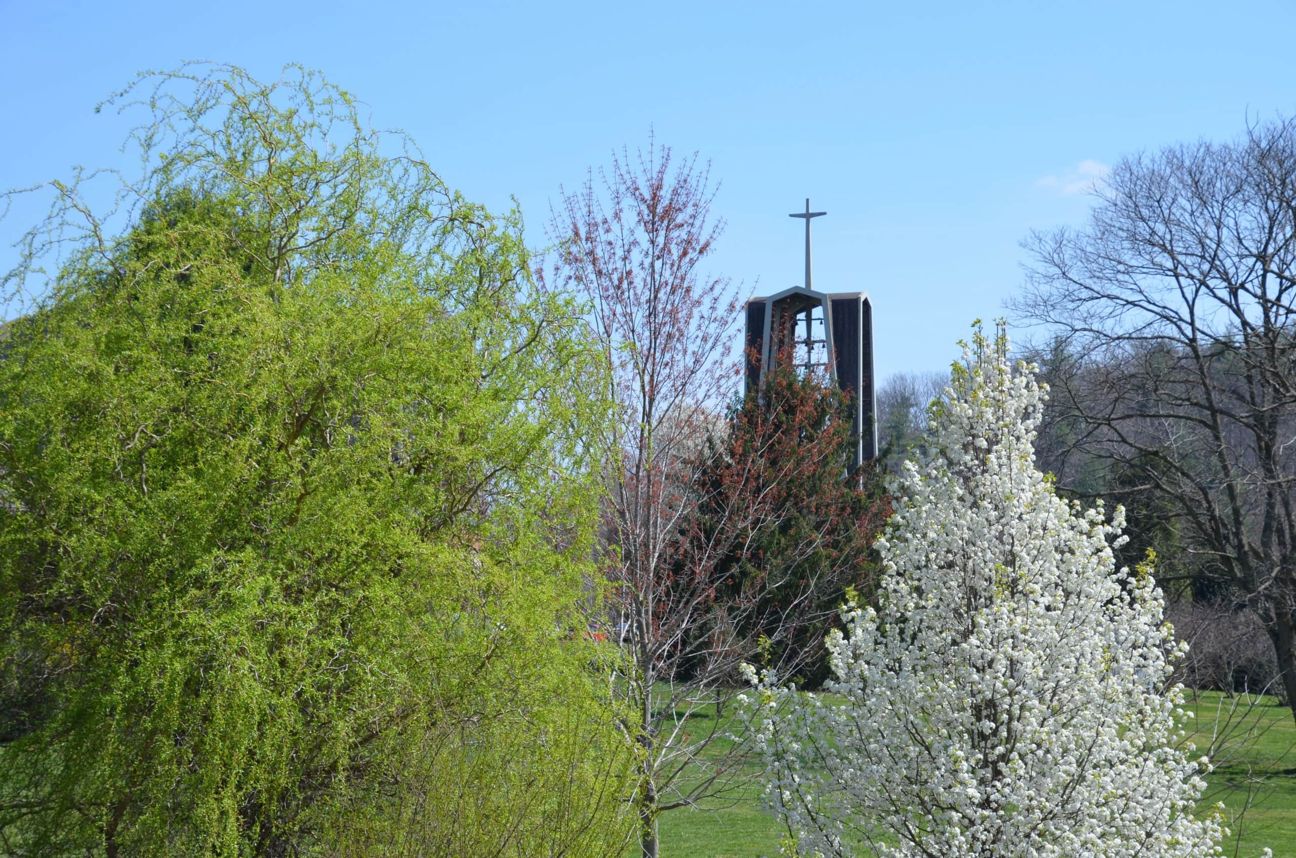 Ferrum College bell tower surrounded by spring trees. Dr. Bob Pohlad photo.