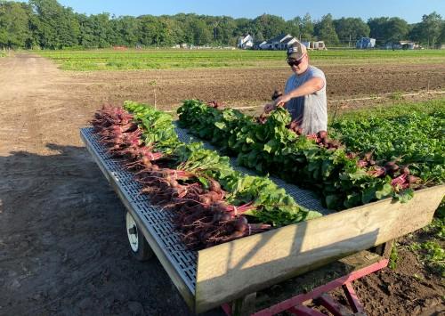 Tim Durham Named Global Farmer Network Roundtable Fellow